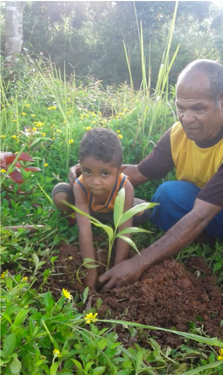 Indonesia_Karen_Campbell_Nelson_boy_w_Rev._Sefnat_plants_seedling.png