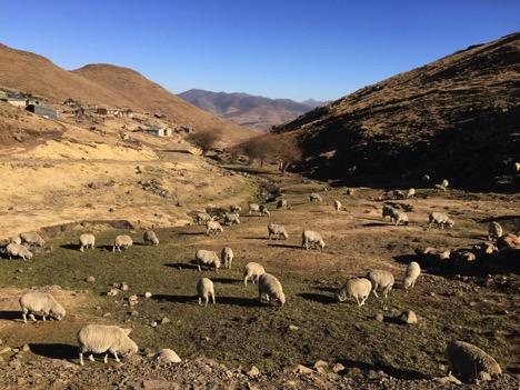 Lesotho_Danielle_Murry_Knowles_02.jpg